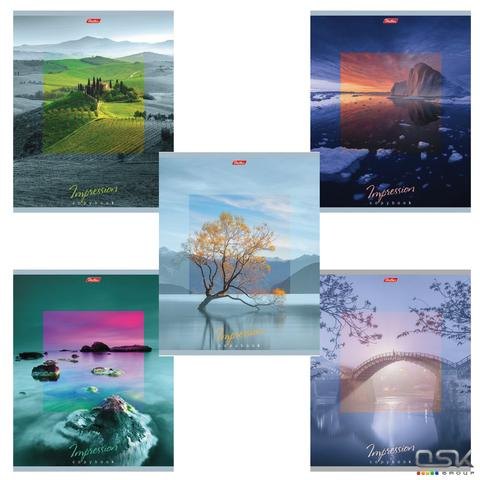 Тетрадь А5 80л. HATBER гребень, клетка, обложка картон, IMPRESSIONS (4 вида), 80Т5В1гр